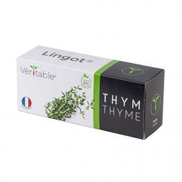 Thym Lingot