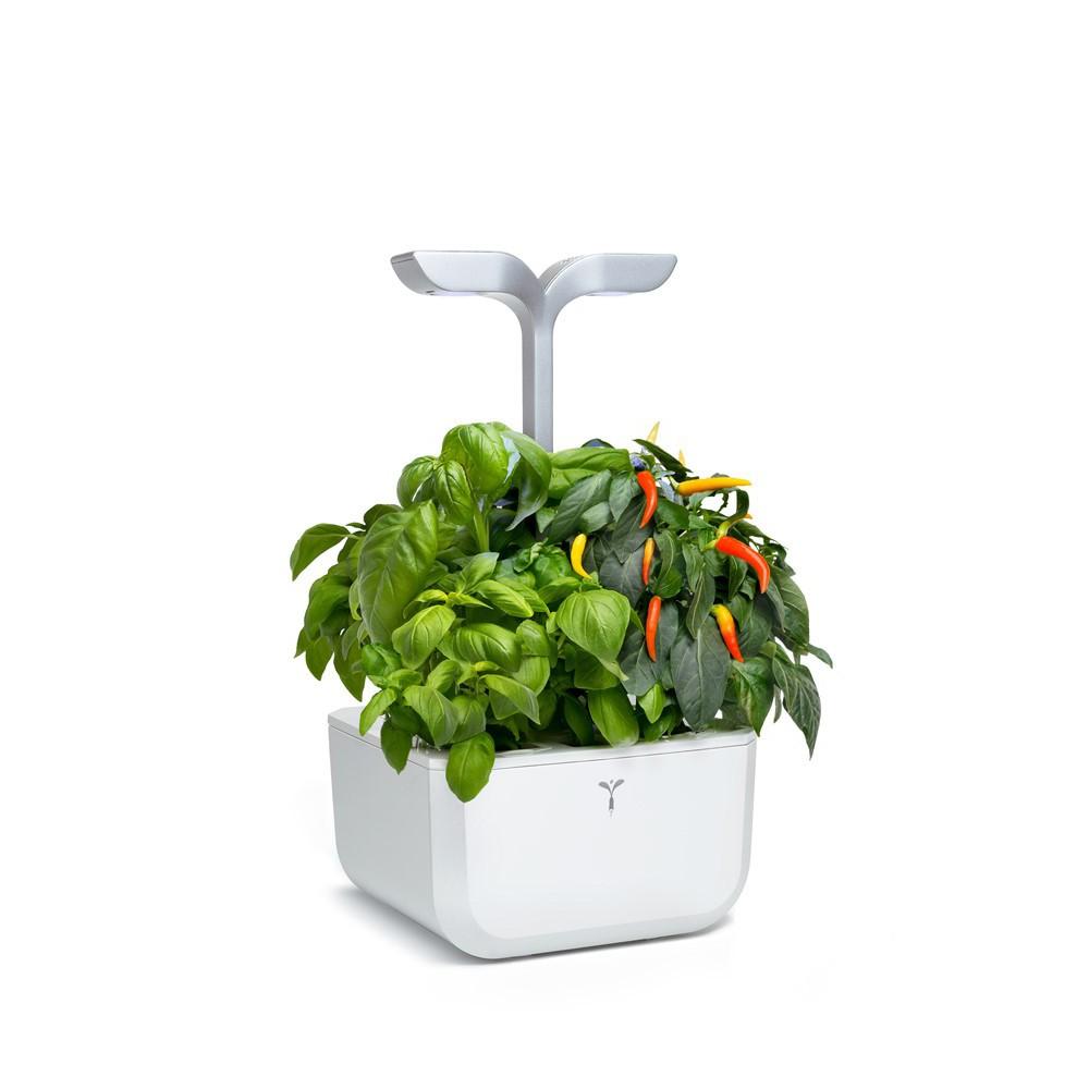 EXKY smart garden